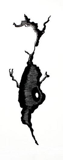 Filiforme 1