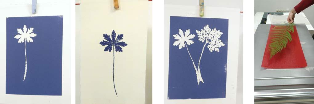 Photos cours monotype empreintes végétales.